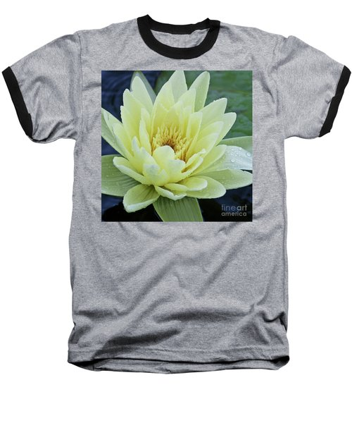 Yellow Water Lily Nymphaea Baseball T-Shirt