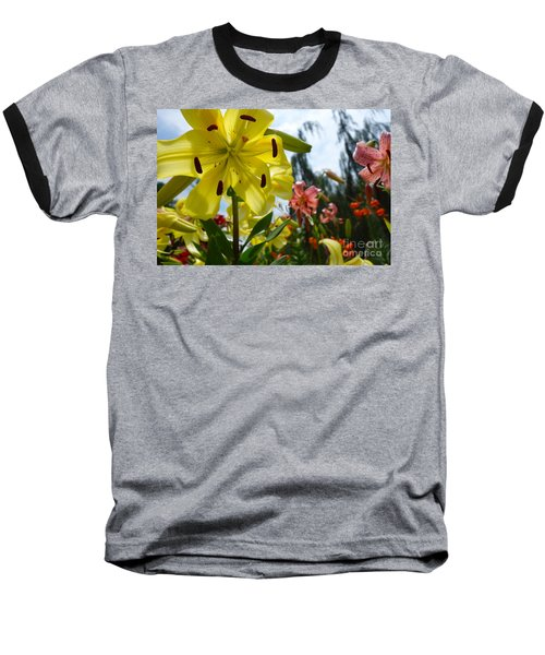Yellow Whopper Lily 1 Baseball T-Shirt