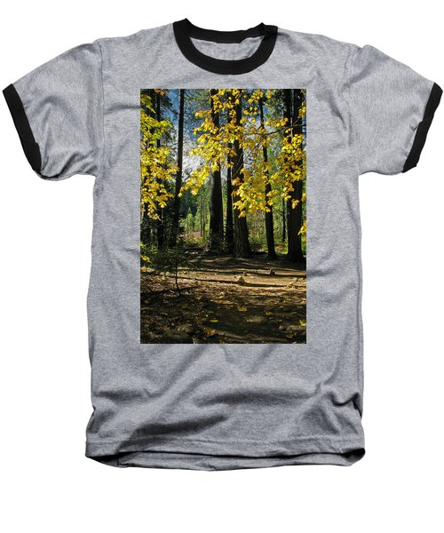 Yosemite Fen Way Baseball T-Shirt by John Haldane