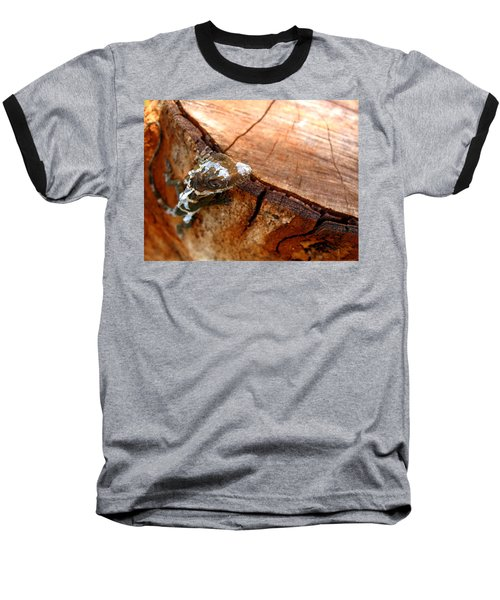 Baseball T-Shirt featuring the photograph You Can See Me? by Greg Allore