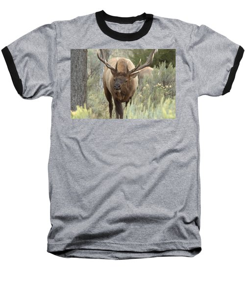 You Looking At Me Baseball T-Shirt