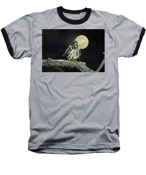 Young Bald Eagle By Moon Light Baseball T-Shirt by John Haldane