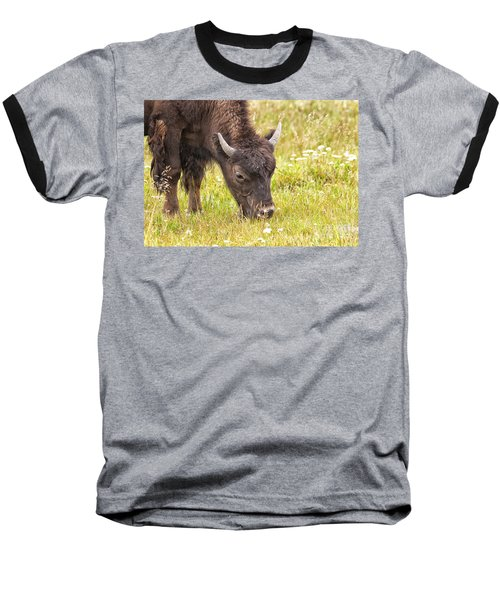 Baseball T-Shirt featuring the photograph Young Bison by Belinda Greb