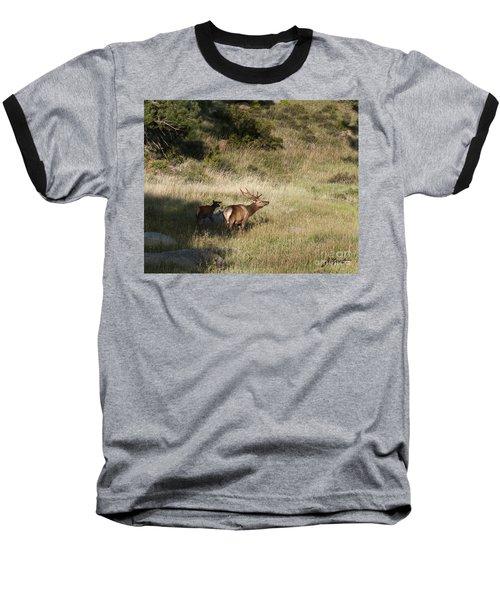 Young Bull Elk Baseball T-Shirt