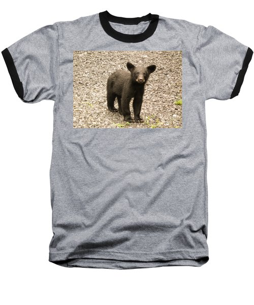 Young Cub Baseball T-Shirt