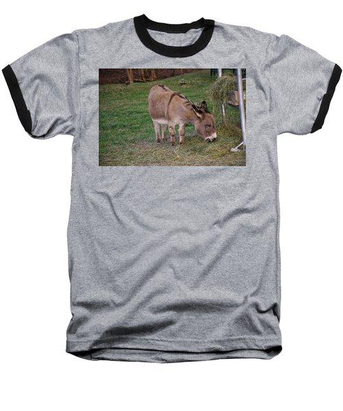 Young Donkey Eating Baseball T-Shirt by Chris Flees