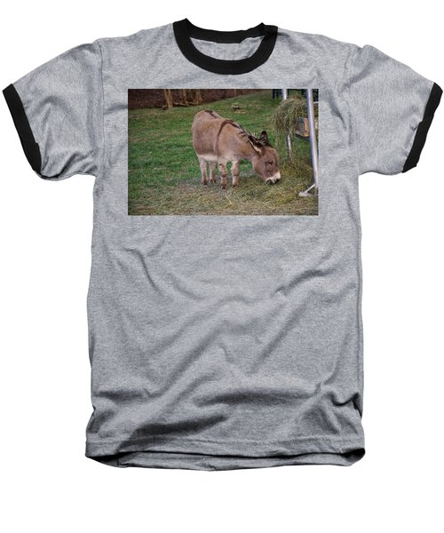 Young Donkey Eating Baseball T-Shirt