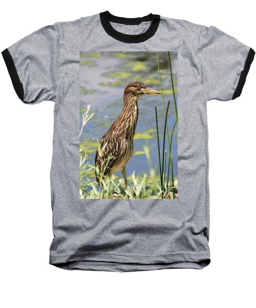 Young Heron Baseball T-Shirt