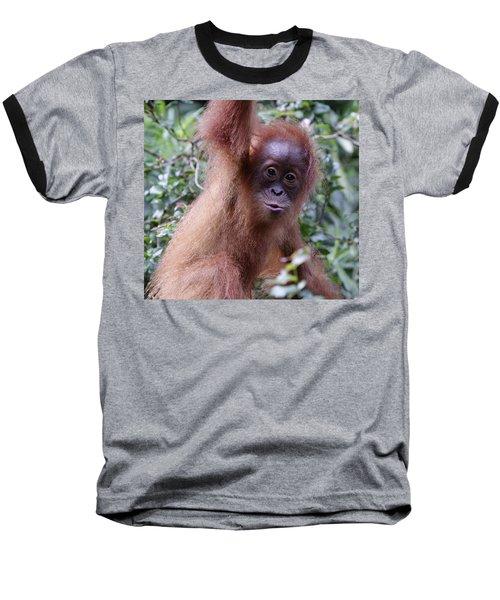 Young Orangutan Kiss Baseball T-Shirt