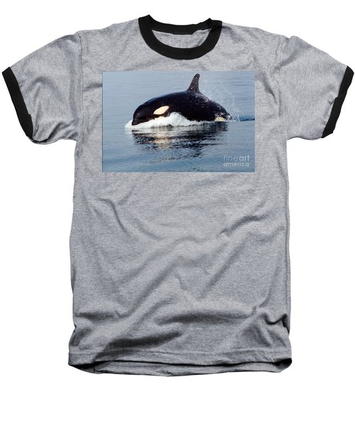 Baseball T-Shirt featuring the photograph Young Orca Off The San Juan Islands Washington 1986 by California Views Mr Pat Hathaway Archives