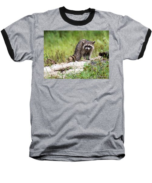 Young Raccoon Baseball T-Shirt