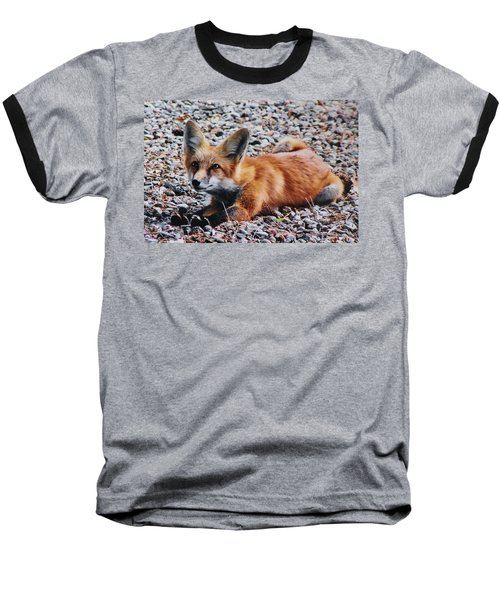 Baseball T-Shirt featuring the photograph Young Red Fox Watches Squirrel by Diane Alexander