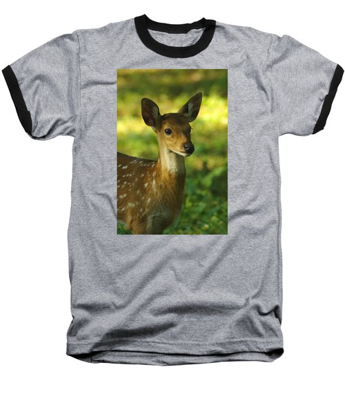 Young Spotted Deer Baseball T-Shirt by Jacqi Elmslie