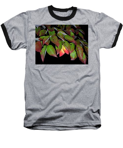 Baseball T-Shirt featuring the photograph Your Colors Are Showing by Lew Davis