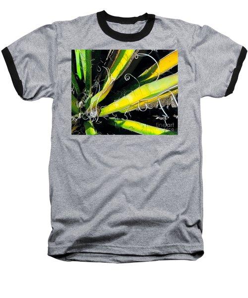 Yucca Spirals Baseball T-Shirt