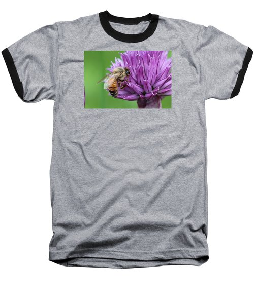 Yummm Chive Nectar Baseball T-Shirt by Lucinda VanVleck