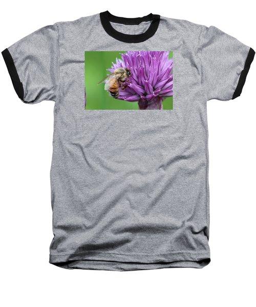 Yummm Chive Nectar Baseball T-Shirt