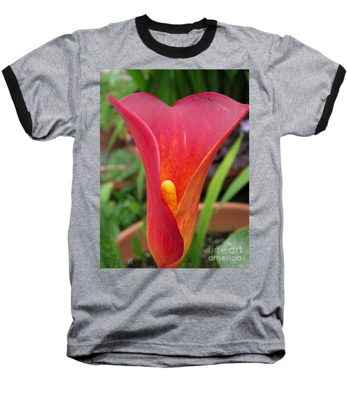 Zantedeschia Named Red Sox Baseball T-Shirt