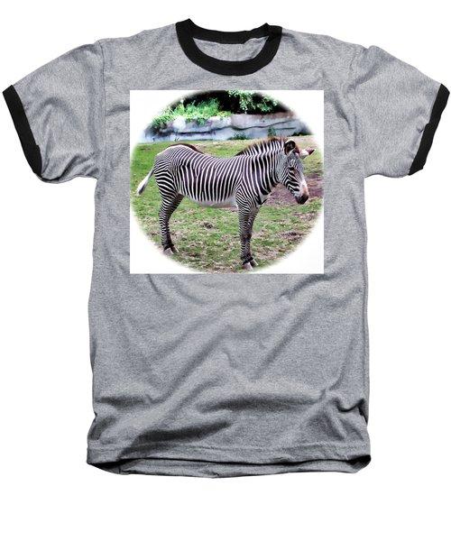 Baseball T-Shirt featuring the photograph Zebra 1 by Dawn Eshelman