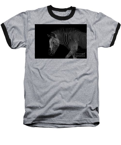 Zebra Art Baseball T-Shirt