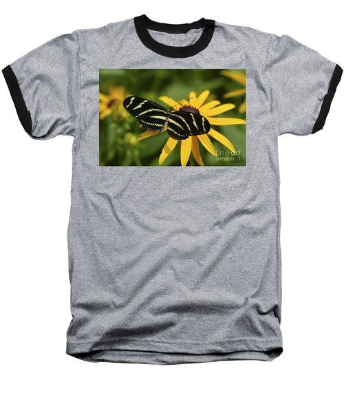Zebra Butterfly Baseball T-Shirt