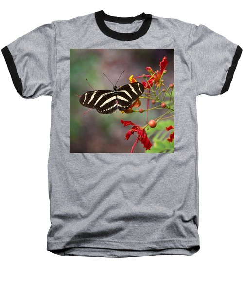 Zebra Longwing Butterfly Baseball T-Shirt