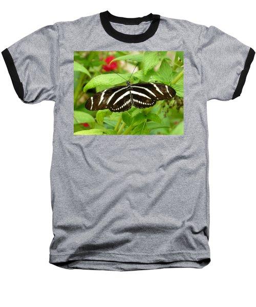Zebra Longwing Baseball T-Shirt by Judy Wanamaker