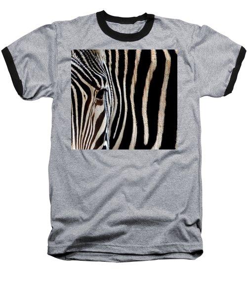 Zebras Face To Face Baseball T-Shirt
