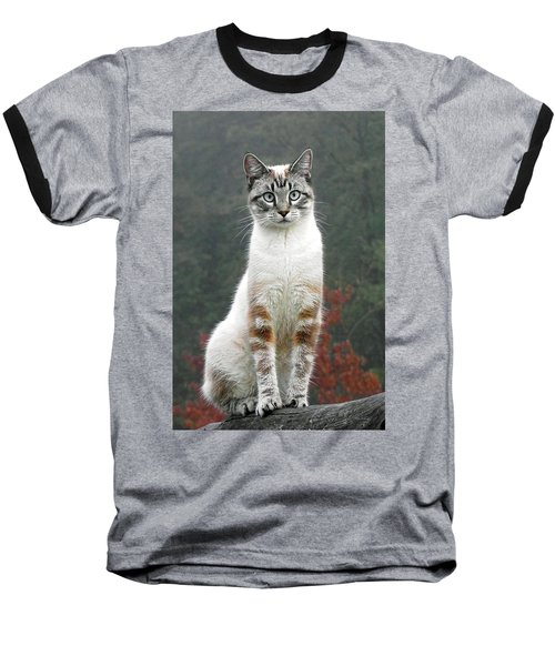 Zing The Cat Baseball T-Shirt