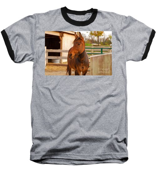 Zorse Baseball T-Shirt by Mary Carol Story