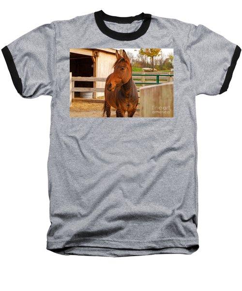 Zorse Baseball T-Shirt