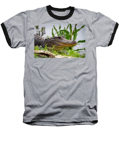 Alligator Baseball T-Shirt