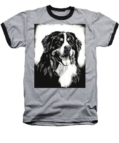 Baseball T-Shirt featuring the drawing Bernese Mountain Dog by Rachel Hames