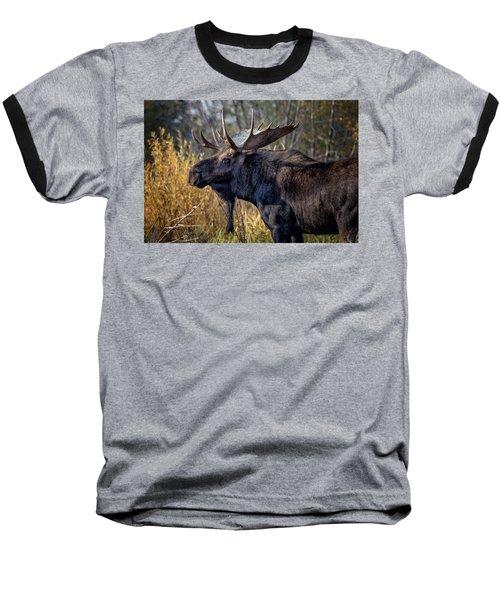 Bull Moose Baseball T-Shirt by Ronald Lutz