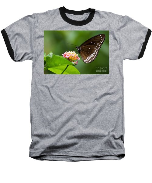 Baseball T-Shirt featuring the photograph Butterfly by Fotosas Photography