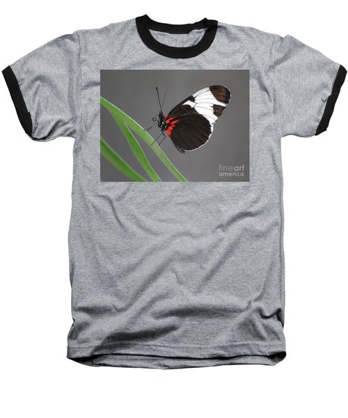 Baseball T-Shirt featuring the photograph Butterfly  by Tam Ryan