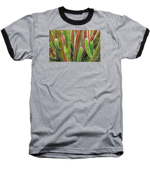 Cactus Baseball T-Shirt by Ranjini Kandasamy
