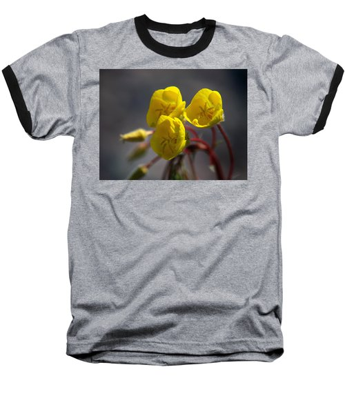 Desert Evening Primrose Baseball T-Shirt by Joe Schofield