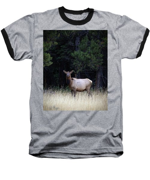 Baseball T-Shirt featuring the photograph Forest Elk by Steve McKinzie