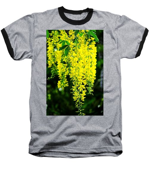 Golden Chain Tree Baseball T-Shirt