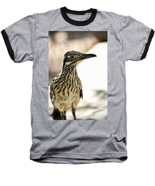 Greater Roadrunner  Baseball T-Shirt by Saija  Lehtonen