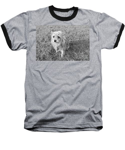 Baseball T-Shirt featuring the photograph Gremlin by Jeannette Hunt