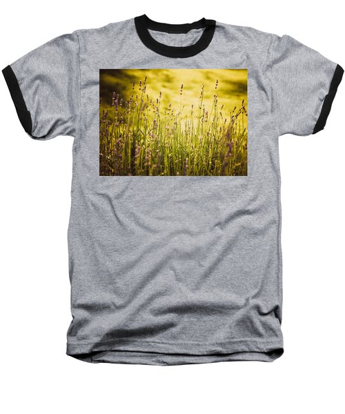 Baseball T-Shirt featuring the photograph Lavender Gold by Sara Frank