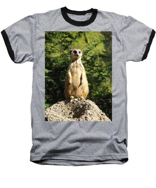 Sentinel Meerkat Baseball T-Shirt by Carla Parris