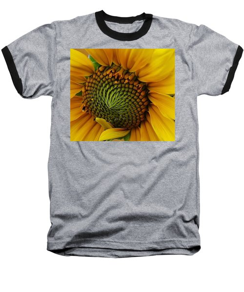 Baseball T-Shirt featuring the photograph Sunflower Close Up by Bruce Bley