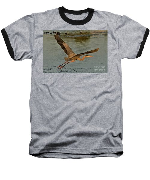 Sunset Flight Baseball T-Shirt by Carol  Bradley