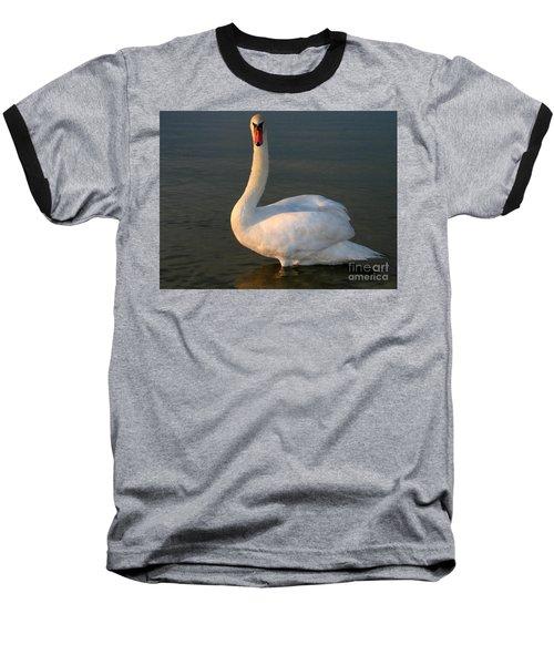 Swan Baseball T-Shirt by Odon Czintos