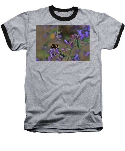 Baseball T-Shirt featuring the photograph Bee by David Gleeson