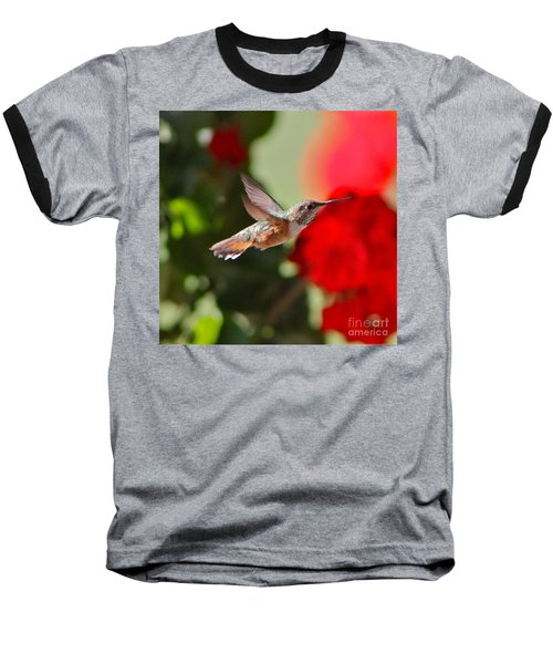 Hummingbird 3 Baseball T-Shirt by Pamela Walrath