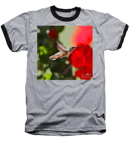 Hummingbird 3 Baseball T-Shirt